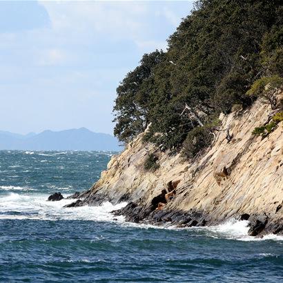 Groupes de Kofun d'Okinoshima