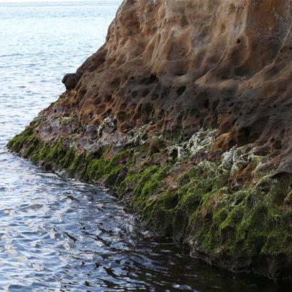 Roches aux formes mystérieuses créées par l'érosion des vagues au fil des années