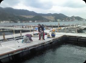 Kaito, aire de pêche maritime de Yura