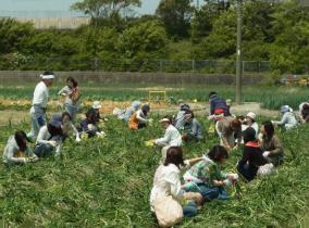 Ferme Hamada de l'île d'Awaji