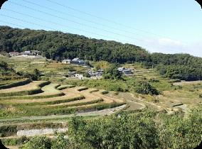 Rizières en escalier d'Ikutahata