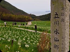 Parc des narcisses Tachikawa