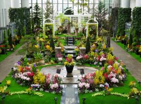 Musée botanique Kiseki no Hoshi